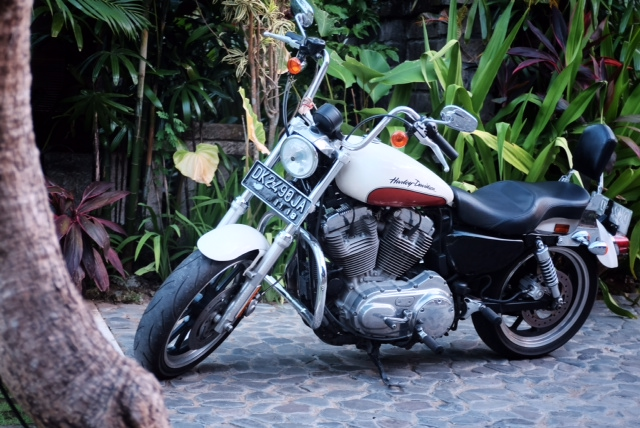 Harley riding in Bali